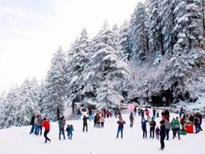 Day 2: Local sightseeing of Shimla