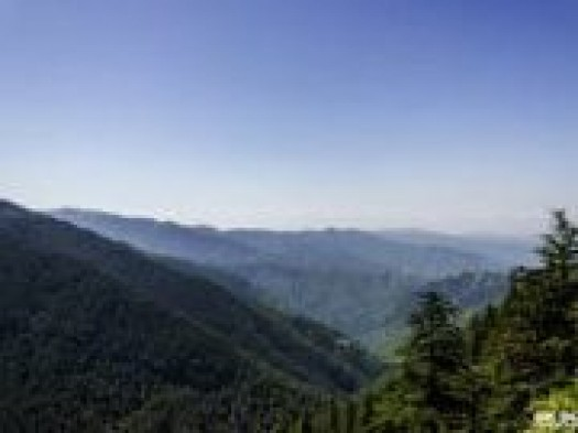 Shimla Deluxe Tour Package