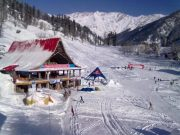 simla manali package