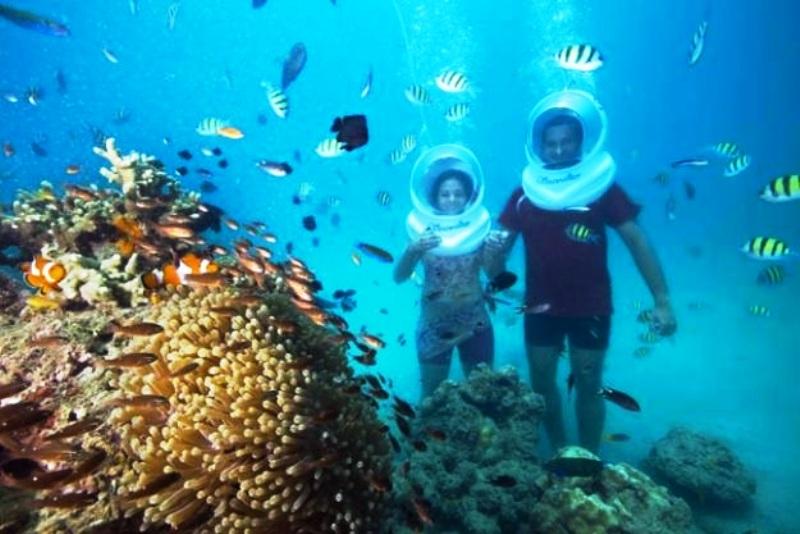 Coral Island Tour Pattaya Timings