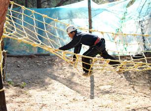 Spider Net activity