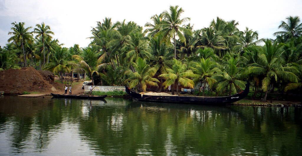 Day 05 : Thekkady - Alleppey And Sightseeing