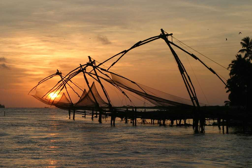 Day 16 : Munnar - Cochin